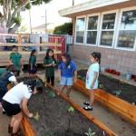 Garden Courtyard Enriches Girls Inc Program